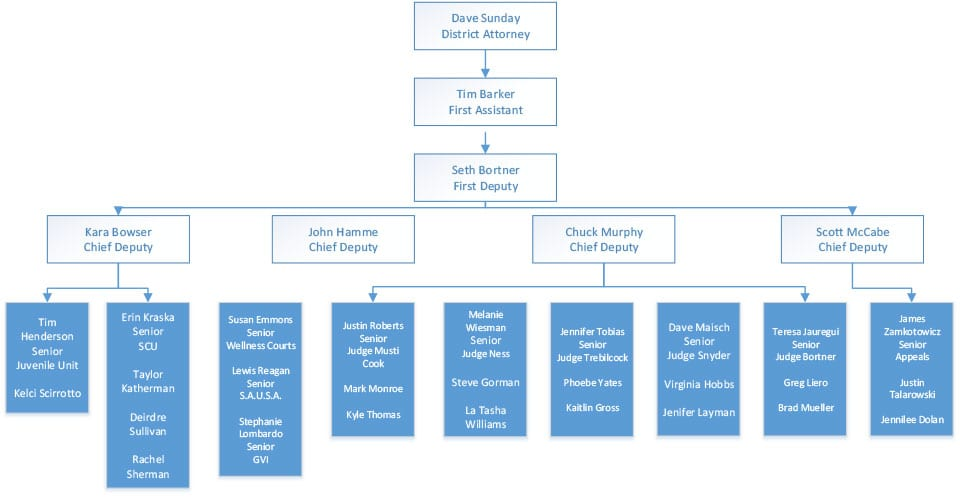 Trial Team Organization Chart